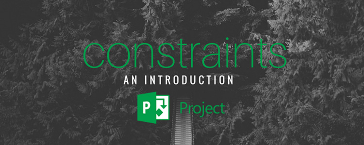 Constraints - an introduction