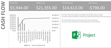 How to use the cashflow report in MS Project?